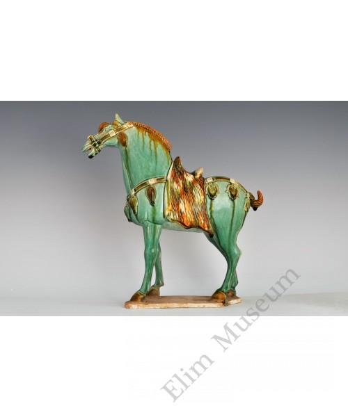 1682 :A green glaze Sancai horse